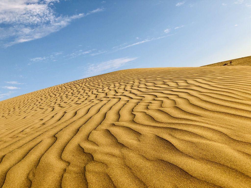 A walk through sand dunes